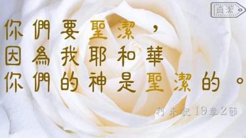 一生不能忘的40金句 (1)