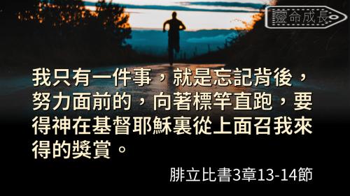 一生不能忘的40金句 (11)