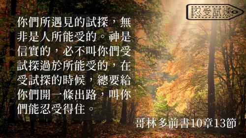 一生不能忘的40金句 (17)