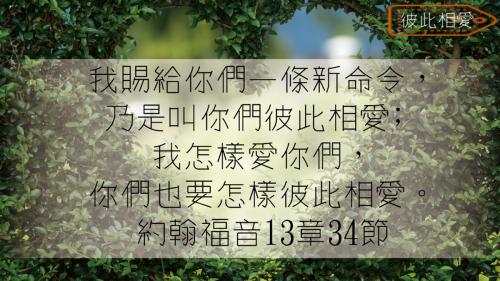 一生不能忘的40金句 (26)