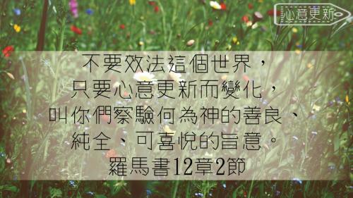 一生不能忘的40金句 (29)