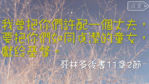 一生不能忘的40金句 (6)
