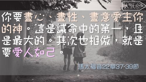 一生不能忘的40金句 (7)