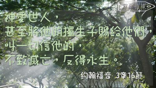 一生不能忘的40金句 (9)
